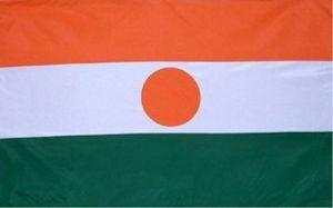 #FLAG001.1e Niger Flag 09-07-2013 (400)
