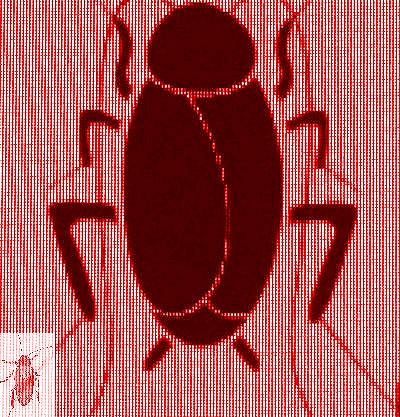 #BHC001.2j Stinkbug #1 2012 (400) B.jpg