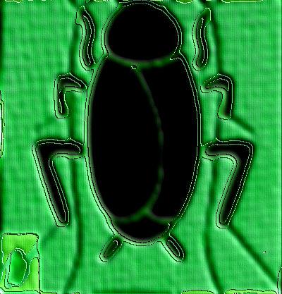 #GK001.3g Stinkbug #2 2012 (400) B