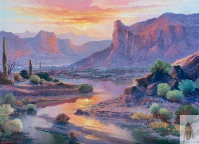 1079 Desert Dreams 20 x 24 (400)