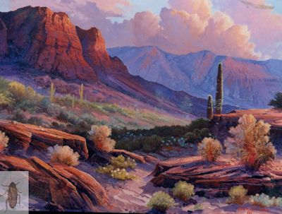 1173 Arizona Afternoon 20 x 24 (400)