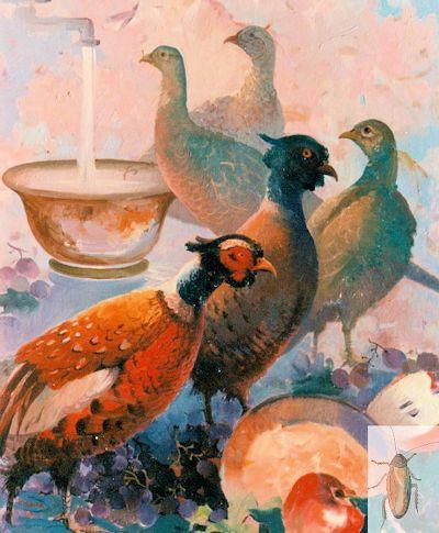 00026 Pheasant Phantasy 20 x 16 (400)