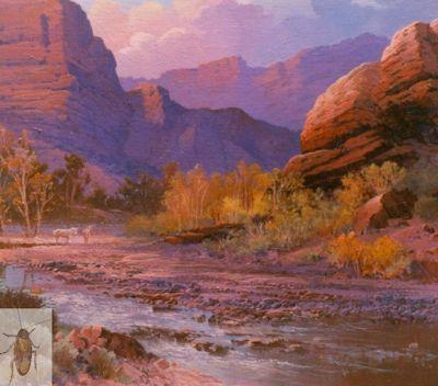 00051 Canyon De Chelly 20 x 24 (400)
