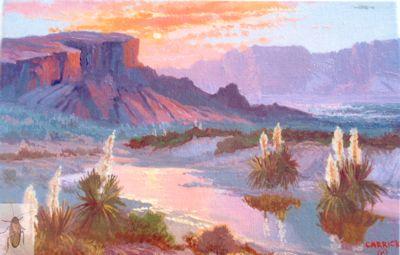 01203 Yucca Sunset 8 x 10 (400)