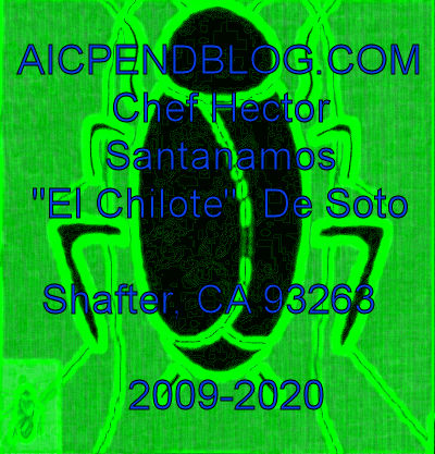 1. #ELC0001.1a Stinkbug #1 03-02-2020