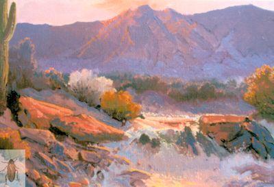 1208 Desert Monsoon 8 x 10 (400)