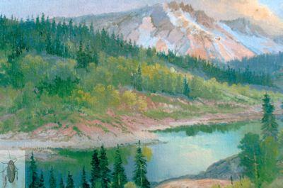 1210 Rocky Mountain 8 x 10 (400)
