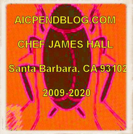 #001.1b JH Stinkbug #1 2012 (400)