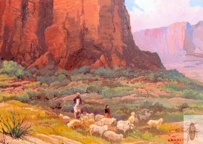 01252 Navajo Flock 8 x 10 (400)