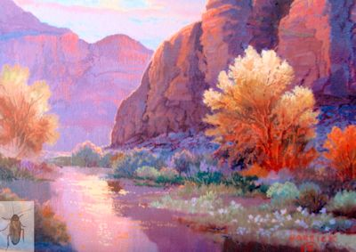 1233 Canyon Mood 8 x 10 (400)