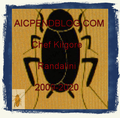 #KR0001.1a Stinkbug #1 04-22-2020 (400)