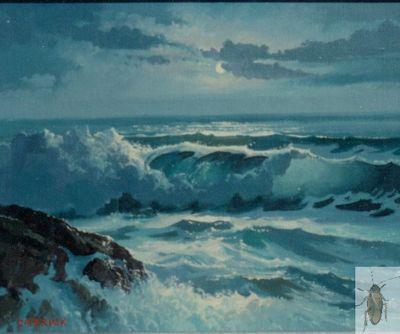 00100 Maui Moonlight 8 x 10 (400)