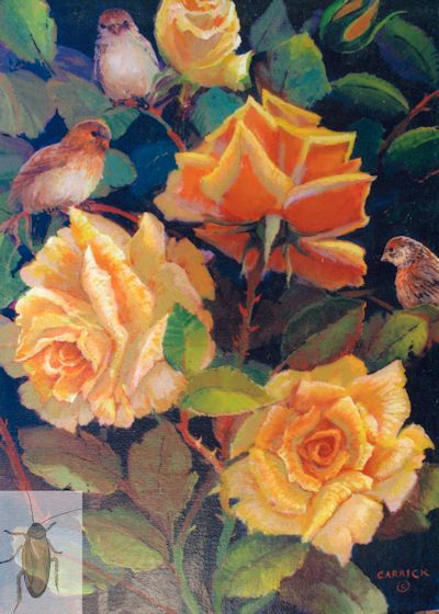 01274 Roses and Sparrows 12 x 16 (400)
