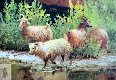 01280 Goats of the Canyon 8 x 10 (400)