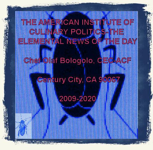 #OB00001.1d Stinkbug #4 05-22-2020