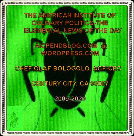 #OB00001.1G Stinkbug #7 05-22-2020
