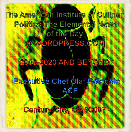 #OB00001.1i Stinkbug #9 05-22-2020