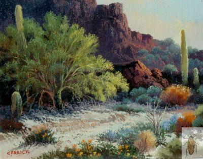 00122 Saguaro Canyon 8 x 10 (400)