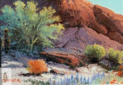 00130 Lupine and Palo Verde 5 x 7 (400)