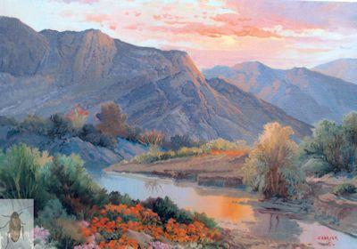 01317 Poppy Sunset 11 x 14 (400)