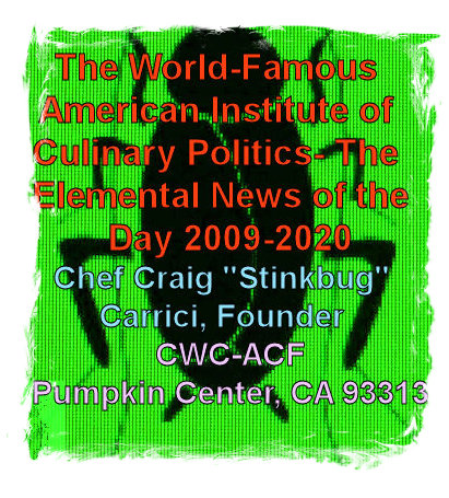 #CC0001.1a Stinkbug #1 06-12-2020
