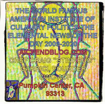 #CC0001.1e Stinkbug #5 06-12-2020