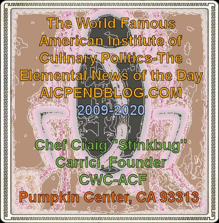 #CC0001.1f Stinkbug #6 06-12-2020
