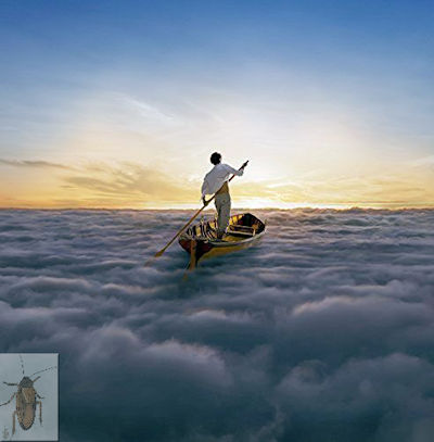 #PF001.2z The Endless River #52 05-28-2020 (400)