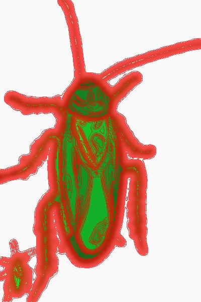 #PM0001.2b Stinkbug #6 05-30-2019 (400)