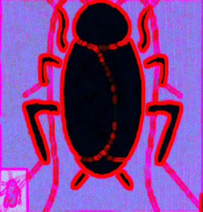 #SB0001.1z Stinkbug #4 06-16-2019 (400)