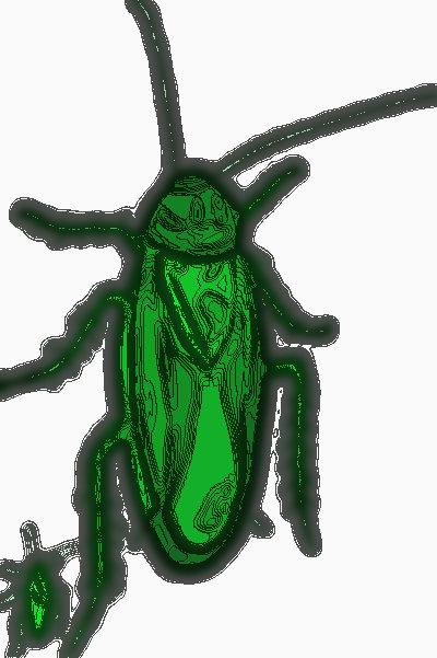 #THG0001.1x Stinkbug #3 06-16-2019 (400)