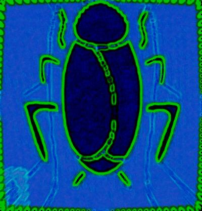 #THG0001.1z Stinkbug #4 06-16-2019 (400)