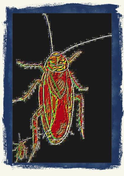 #VVM0001.1y Stinkbug #3 07-07-2019 (400)
