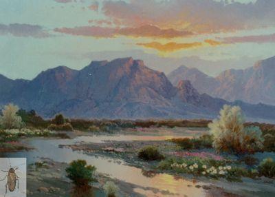 00167 A Sunset Sky 12 x 16 (400)