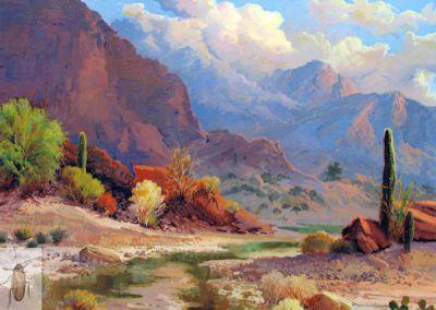 01335 Saguaro Canyon 16 x 20 (400)