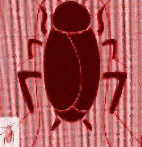 #BHCZ0001.1x Stinkbug #2 07-19-2019 (400)