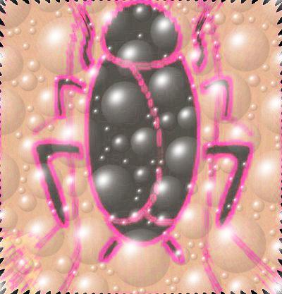 #BHCZ0001.2h Stinkbug #5 07-19-2019 (400)