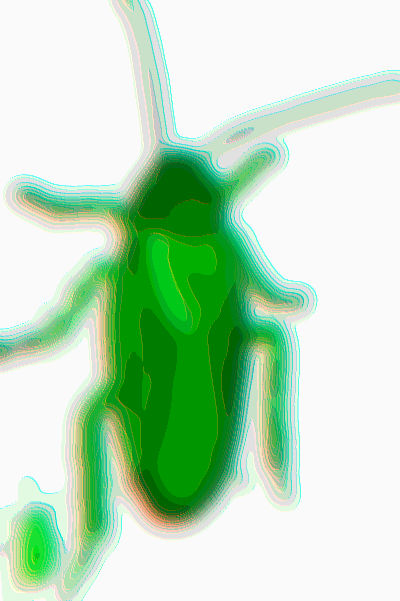 #VG0001.2g Stinkbug #7 07-13-2019 (400)
