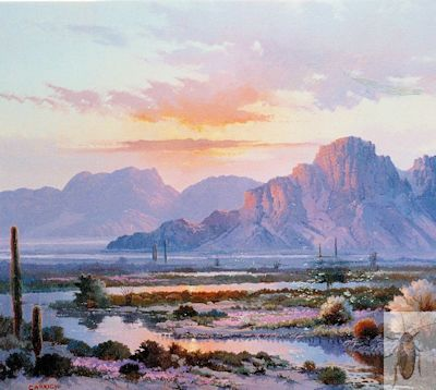 00180 Arizona Evening 20 x 24 (400)