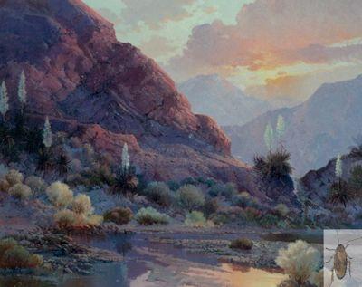 00185 Yucca Sunset 20 x 24 (400)