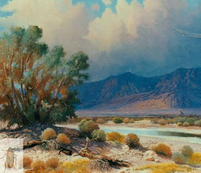 00198 Morning at Furnace Creek 20 x 24 (400)