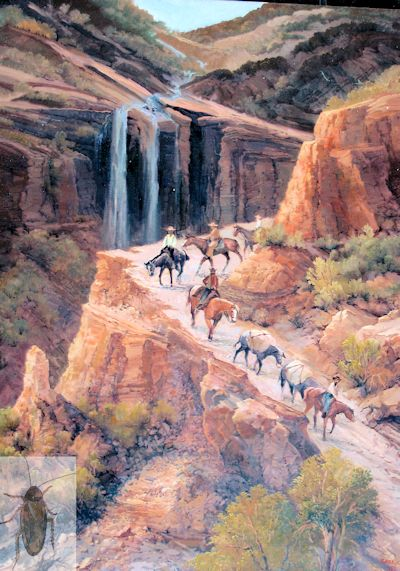 01364 In Canyon Country 40 x 30 (400)