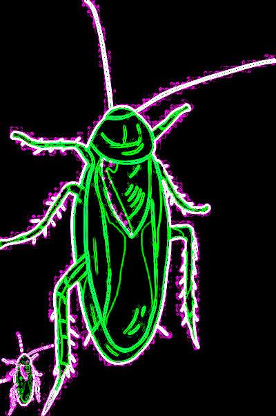 #CLT0001.2f Stinkbug #6 08-18-2019 (400)