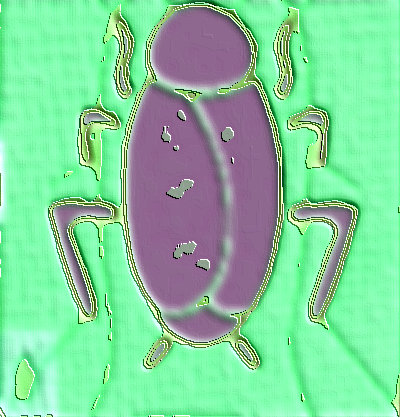 #CS0001.2f Stinkbug #5 08-12-2019 (400)