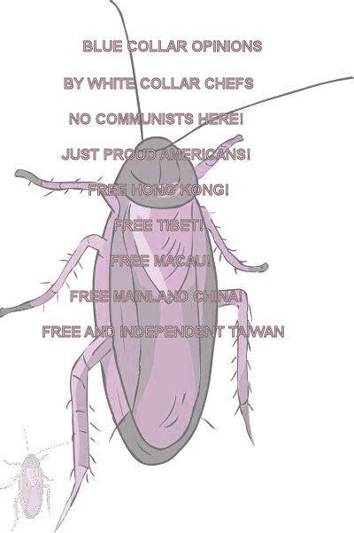 #EC0001.1k Stinkbug #11 08-13-2020 (400)